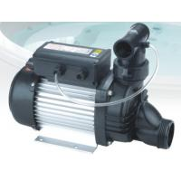China IP55 Low Voltage Self Priming Water Pump Swimming Pool Water Pumps With USA Plug on sale