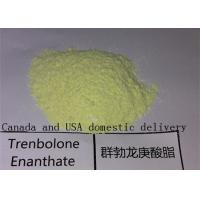 Trenbolone Enanthate Raw Powders Anabolic Bulking Cycle Steroids for Muscle Growth Manufactures