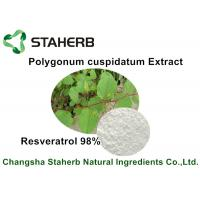 Resveratrol 50% - 98% Raw Cosmetic Ingredients Polygonum Cuspidatum Extract Manufactures