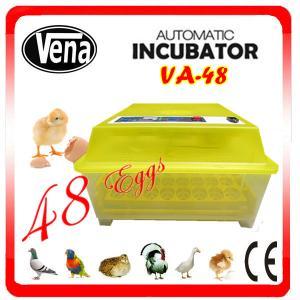 Chicken egg incubator / mini incubator / va-48 egg incubator Manufactures