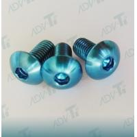 Corrosion Resistant Titanium Fastener , Decorative Shining Blue Titanium Screws Manufactures