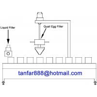 Automatic Quail Egg and Liquid Filling Machine Manufactures