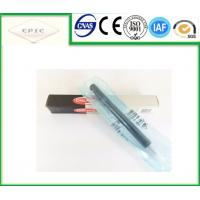 A6650170221 Delphi Fuel Injector - Ssangyong Rexton Kyron , Stavic , Rodius , EJBR04401D Manufactures