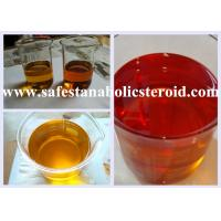 China Injectable Trenbolone Enanthate Anabolic Steroids For Building Muscle CAS 10161-33-8 on sale