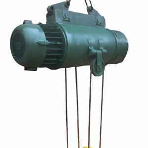 mini electric hoist 100kg Manufactures