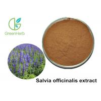 China ISO Approval Pure Natural Herbal Extract / Sage Extract Powder Relaxes Cramps on sale