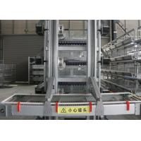 China High Efficiency Automatic Egg Collection System / Egg Farm Machinery on sale