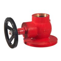"""hot sale globle hydrant valve 2.5"""" brass in red painting Manufactures"""