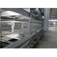 China Double Side Automatic Egg Collection System / Egg Farm Machinery Simple Structure on sale