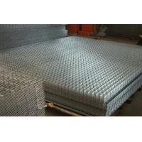 China hot sales electric galvanized welded wire mesh fence panels for poultry coop on sale