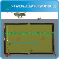 China Non Toxic Mouse Glue Boards , Disposable Mouse Rat Killing Glue on sale
