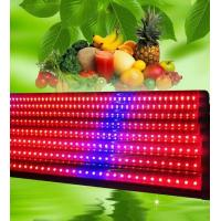 120 Degree LED Weed Growing Lights T8 18w , Grow Light Strips Bar Eco Friendly Manufactures