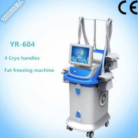Fat Freezing Multi-functional Slimming Machine with 4 handles for salon Manufactures