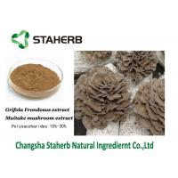 Antibacterial plant extracts Maitake Mushroom Extract  30% Polysaccharides Manufactures
