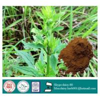 China GMP 100% Natural Valerian root extract on sale