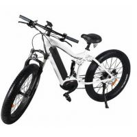 MTB ebikes 48V 1000W Fat E Ebike Mountain Electric Bicycles Manufactures