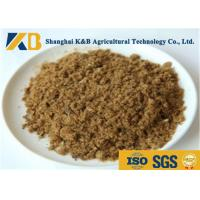GMP Pure Natural Fish Meal Powder / Animal Feed Additives 65% Protein Content Manufactures