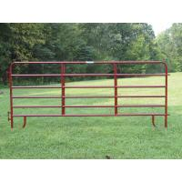 5ft x 9.5ft full welded hot dipped galvanized Corral panels /  hog panels Manufactures