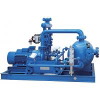 Professional Water Ring Vacuum Pump Units Energy  Saving Mechanical Seal Manufactures