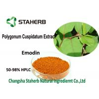 98% Emodin Powder Pure Natural Plant Extracts , Polygonum Cuspidatum Root Extract Manufactures