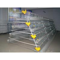 Poultry Cage for Layer Chicken Farm Manufactures