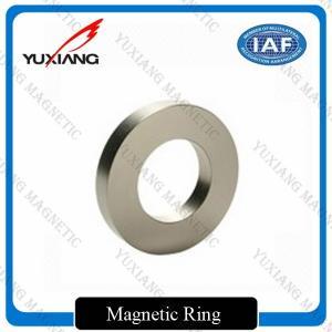 Industrial Sintered N38 Ring Neodymium Magnet Composite Professional Design Manufactures