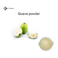 Light Yellow Anticancer Fine Powder Guava Fruit Extract Manufactures