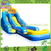 Popular inflatable slide inflatable water slide,giant inflatable water slide for adult Manufactures