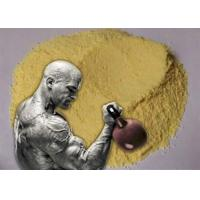 Yellow Trenbolone Base Tren Anabolic Steroid Hormones Powder Bulking Cycle Manufactures