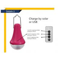 Solar Energy Lighting/Portable Solar Camping Lights/Solar Power System with remote control Manufactures