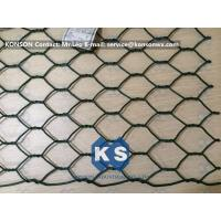 Professional PVC Gabions Wire Mesh Box and Basket for Chicken Hexagonal Wire Netting Manufactures
