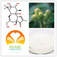 17673-25-5 Natural Powdered Herbal Extracts High Purity Phorbol HPLC>98% Manufactures