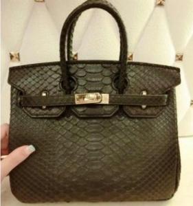 Hermes Python Leather Birkin 25CM GHW Manufactures