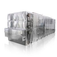 China 3-5 Layers Automatic Vegetable And Fruit Mesh Belt Dryer Ginger Drying Machine on sale