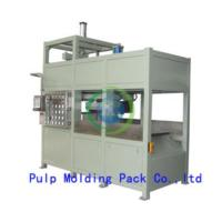 Egg Tray Pulp Molding Machine Manufactures
