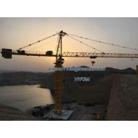 Model H3/36 TC6036 Tower Crane 60m Jib 12t Capacity 3M Potain Mast Section Manufactures
