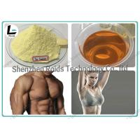 Injectable Anabolic Steroids CAS 10161-33-8 , Trenbolone Enanthate 100 For Muscle Gain Manufactures