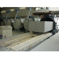 China Wide range capacity green technology automatic autoclaved brick production line with reasonable price on sale