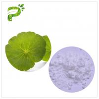 Asiaticoside from Gotu Kola Extract Powder , Centella Asiatica Leaf Extract For Skin Scars Repairing Manufactures
