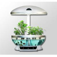 2011 Christmas Gifts ! MOCLE Fish Tank Is A Garden Centre Manufactures