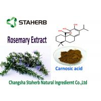 Quality Natural Rosemary Leaf Extract Antioxidants Carnosic Acid 5-90% Good Oil Souble for sale