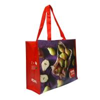 Eco Handmade Non Woven Shopping Tote Laminated Grocery Bags For Women Manufactures