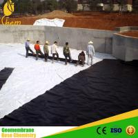 China Ldpe geomembrane liner hdpe liner on sale