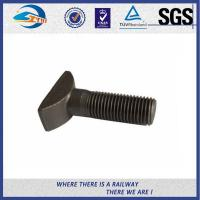 High Tensile Q235 Steel Bolts And Nuts With Hot Dip Galvanized / Zinc Plated Surface