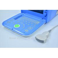 Quality lcd  Laptop Ultrasound B/W Ultrasound Equipment VET Portable Ultrasound for sale