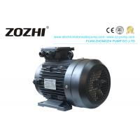 China Cleaning Machine Electric Induction Motor 7.5KW HS132S2-4 With Hollow Shaft on sale