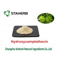 Quality Camptothecae Acuminatae Pure Natural Plant Extracts Hydroxycamptothecin 98% for sale