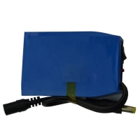 1000 Cycle MSDS 2600mAh 12V Lipo Battery Pack Manufactures