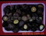 Quality Thin Mushroom for sale