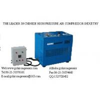 LYW300T18 CNG Compressor +86-21-51076027 Manufactures